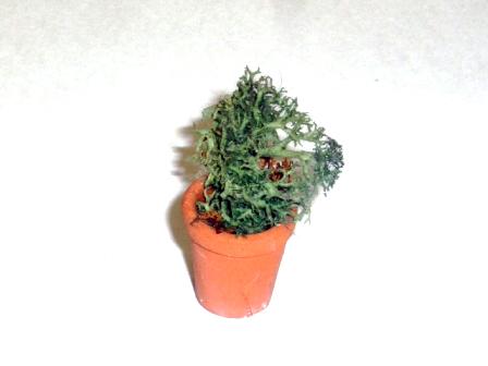 ガーデン小物 花瓶・鉢等 鉢植え 英国より直輸入 12分の1サイズの ドールハウス・アクセサリーです。