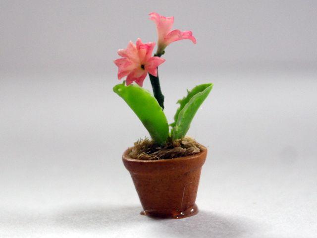 ガーデン小物 花瓶・鉢等 花鉢 英国より直輸入  12分の1サイズの ドールハウス・アクセサリーです。