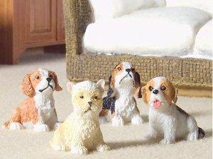 画像1: 子犬4匹セット