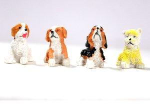 画像2: 子犬4匹セット