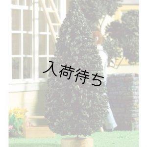 画像1: 木 高さ200mm