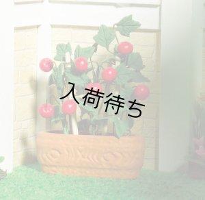 1/12サイズのドールハウス用ミニチュア チェリートマト 鉢植え