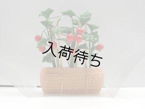 画像2: チェリートマト 鉢植え