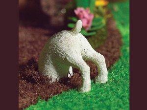 画像1: 穴を掘っている犬 Dexterデクスター