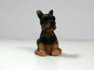 画像1: 子犬