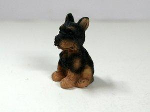 画像3: 子犬