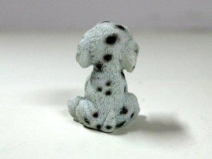 画像4: 子犬