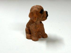 画像5: 子犬
