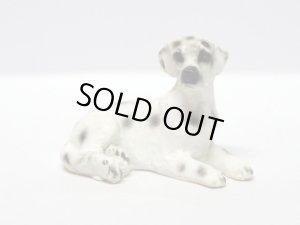 画像1: ペット 犬