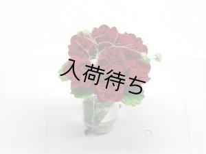 """画像4: ガラス花瓶入り""""バラ"""" レッド"""