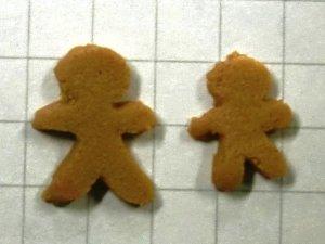 画像1: クッキー 2枚入り