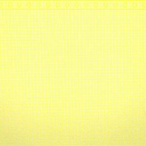 画像3: GINGHAM Yellow