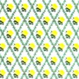 RACHEL Yellow/White